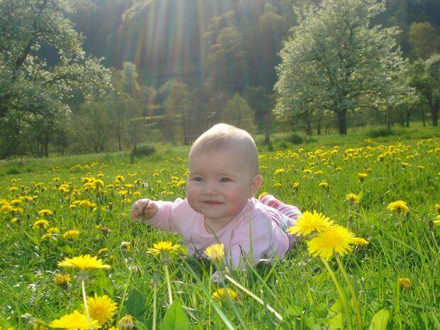 1b_ODC_Fruehlingsfoto_MB_Jennifer_Lehnertz_Peffingen_Fruehling April 2009 026 (JPG)