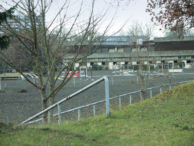 CA Reitschultest 0206 Heidelberg3 (jpg)