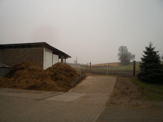 CA Reitschultest 0306 Erkmann5 (jpg)