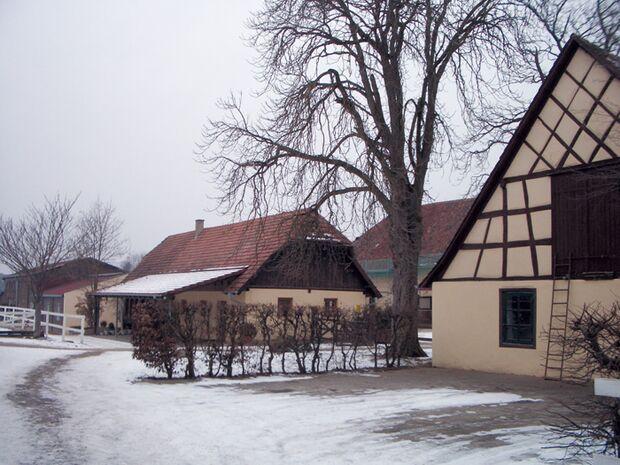 CA Reitschultest 0406 Langenstein2 (jpg)