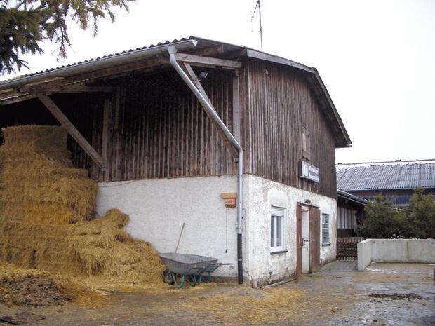 CA Reitschultest 0406 Pfullendorf4 (jpg)