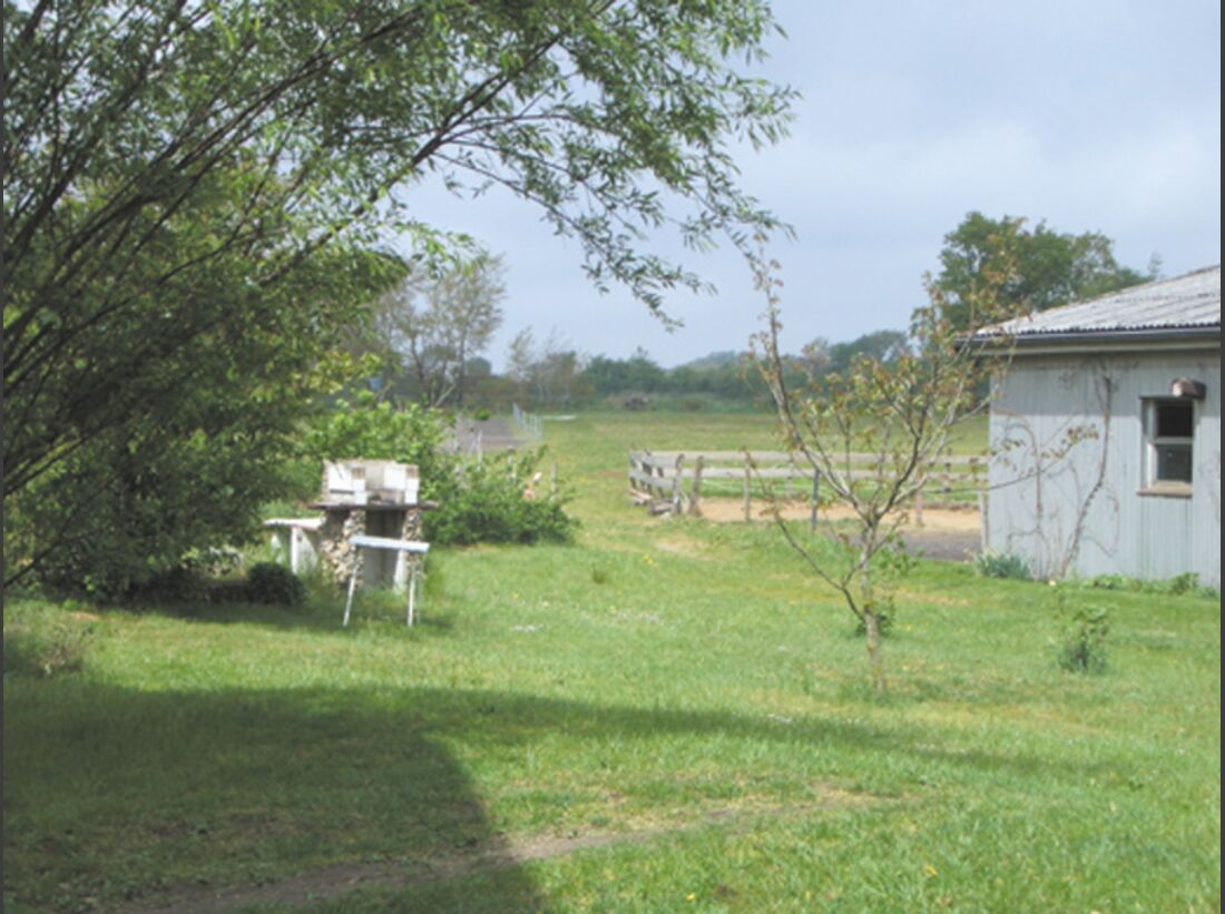 CA Reitschultest 0706 Eggenhof2 (jpg)