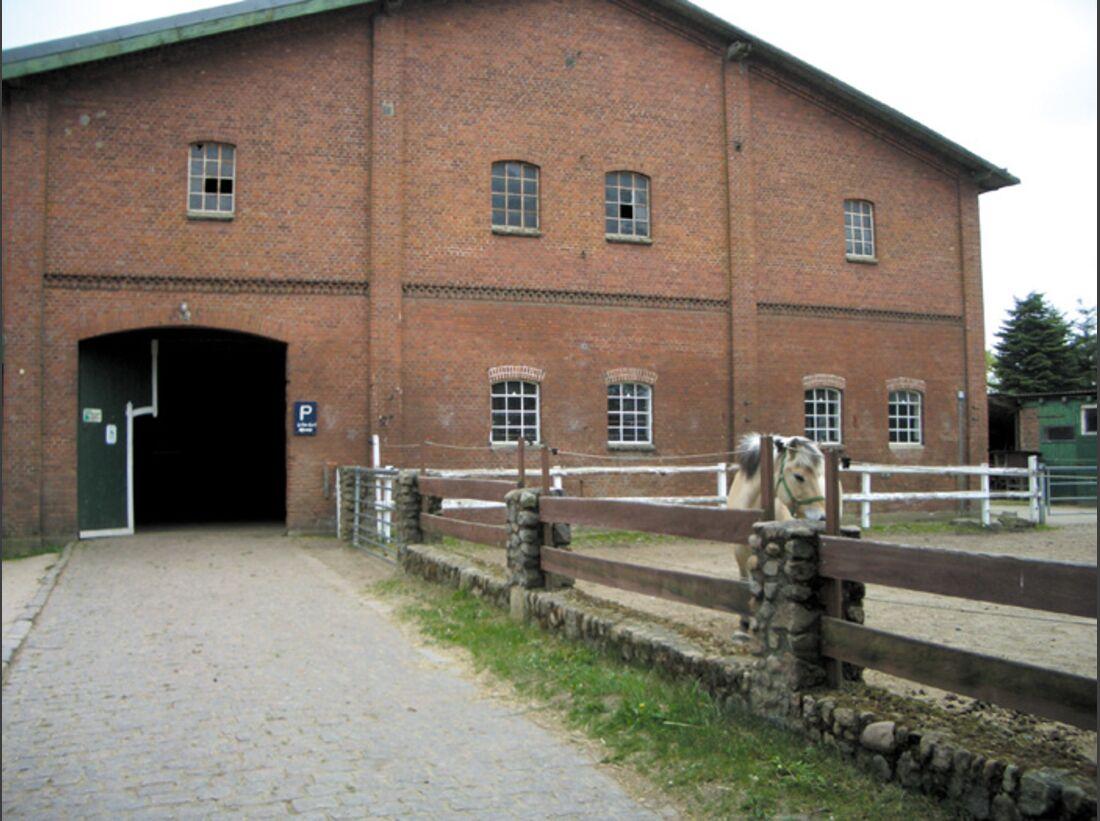 CA Reitschultest 0706 Ponyfarm3 (jpg)