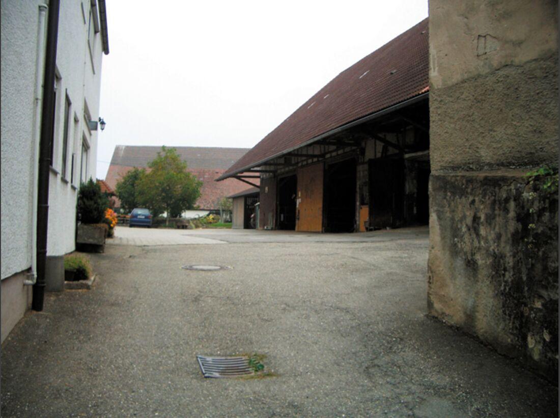 CA Reitschultest 1106 Islaender1 (jpg)