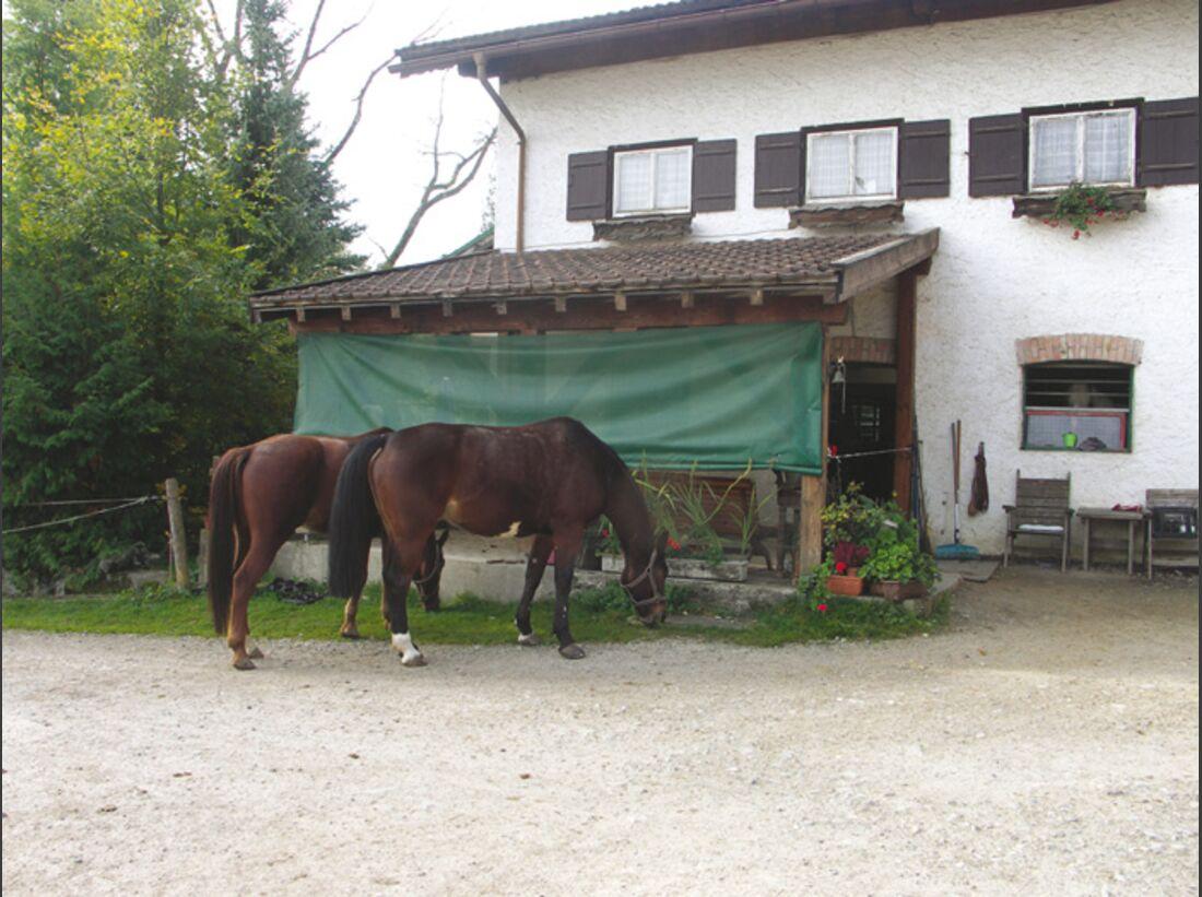CA Reitschultest 1206 Ihlingshof2 (jpg)