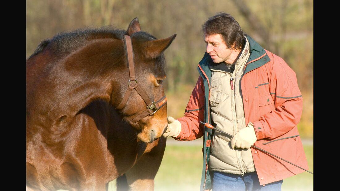 CAV 0108 Gurutest - Gorgi mit Pferd
