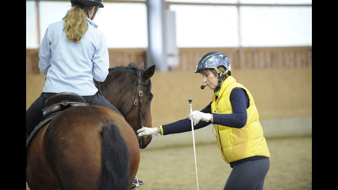 CAV_0111_Connected_Riding_Peggy_Cummings_LIR_09 (jpg)