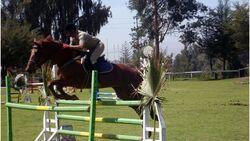 CAV 0111 Peru_14 (jpg)