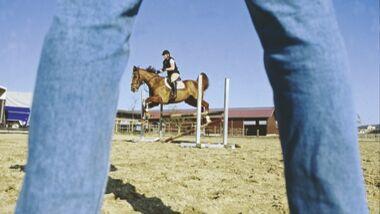 CAV 0210 Pferd Pur Kaufvertrag_01