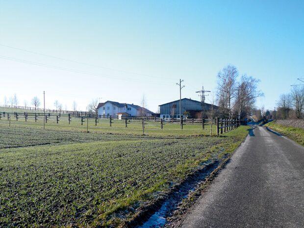 CAV 0309 Reitschultest birkenhof 3 (jpg)