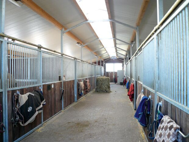 CAV 0309 Reitschultest birkenhof 4 (jpg)