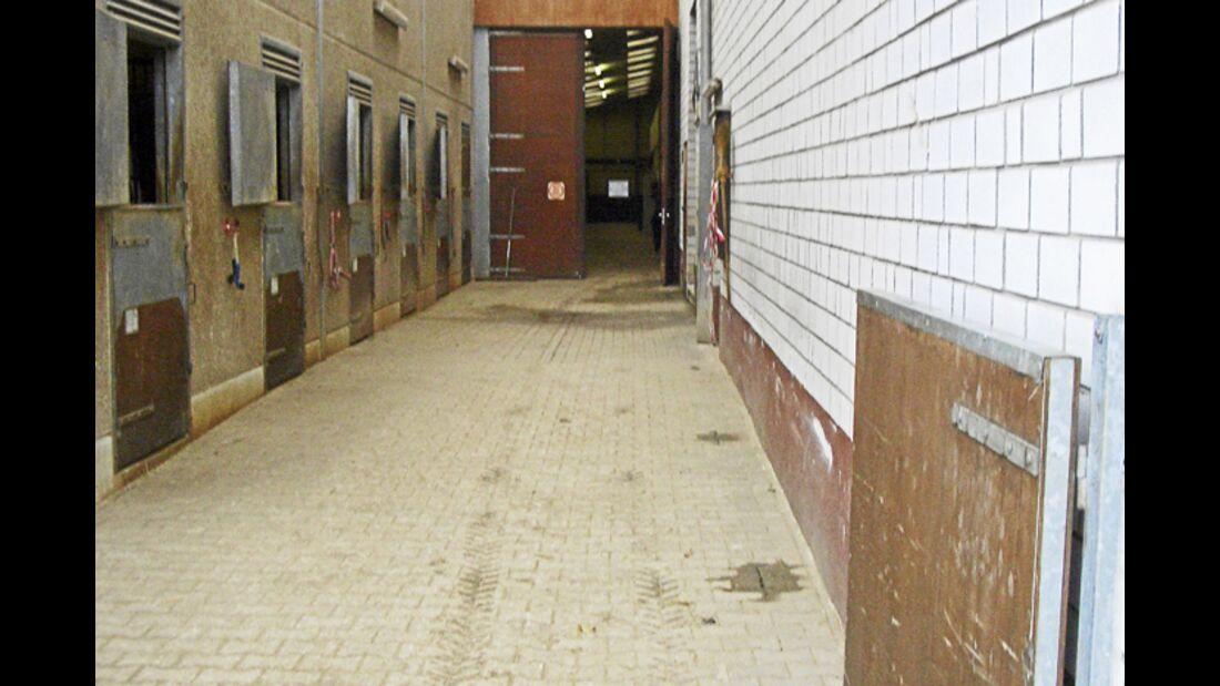 CAV-0312-Reitschultest-Eller-Stall (jpg)