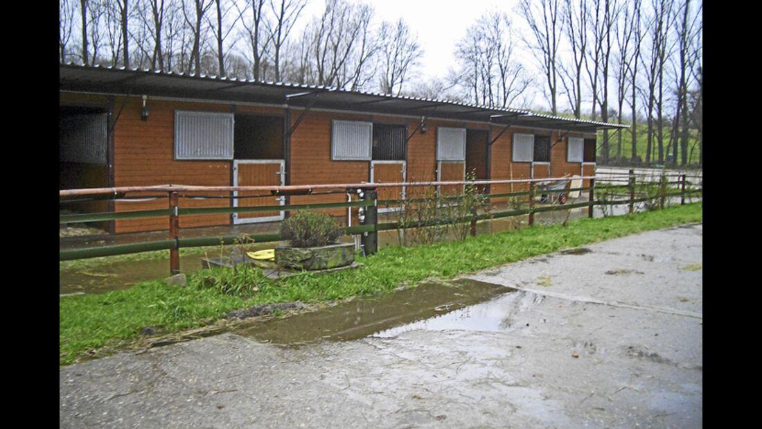 CAV-0312-Reitschultest-Pabsthof-außen (jpg)
