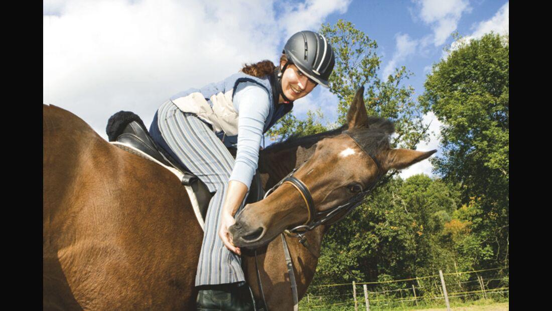 CAV 04_2010_Pferde richtig loben_03 (jpg)