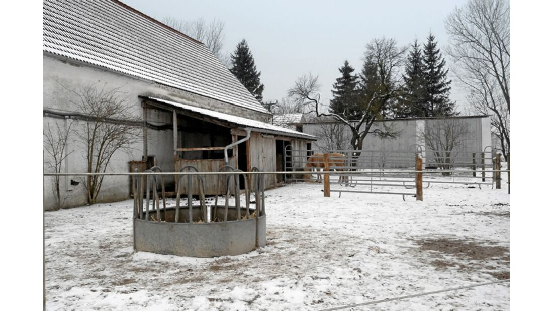 CAV-0412-Reitschultest-Riedmuehl-Ranch-aussen (jpg)
