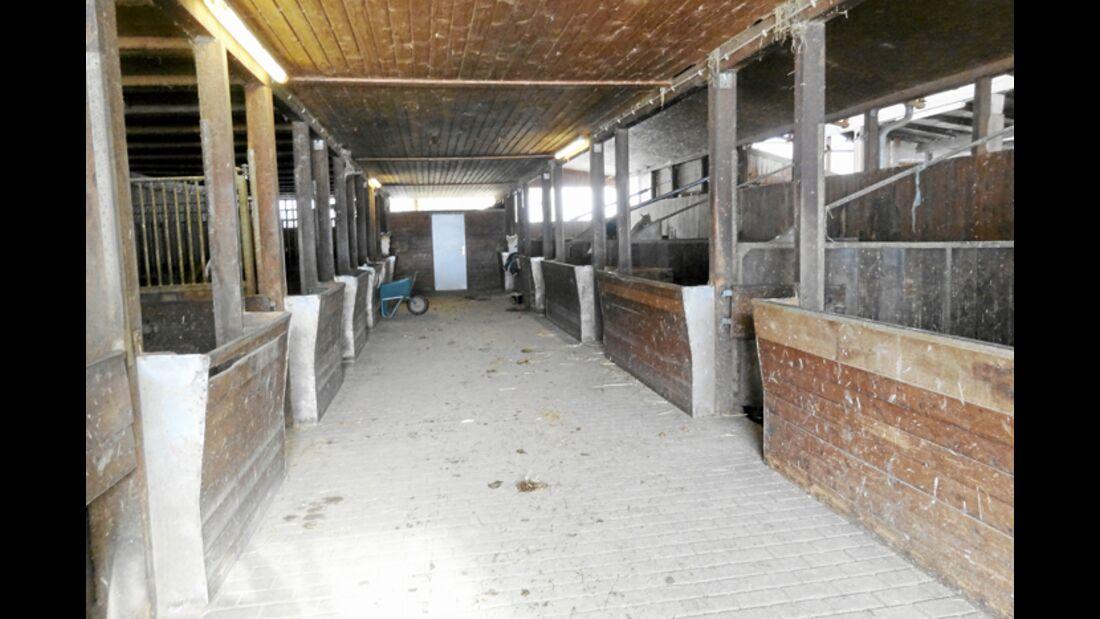 CAV-0412-Reitschultest-Wagner-Stall (jpg)