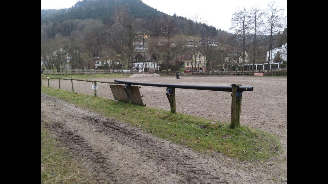 CAV-0413-Reitschultest-Kull Ranch 08_Landwehr