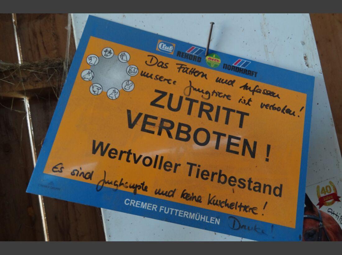 CAV-0812-Reitschultest-Heimpelhof-4 (jpg)
