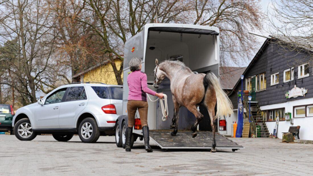 CAV 0911 Zugfahrzeuge Reiterauto - Verladen