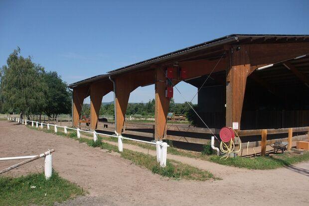 CAV 1011_Reitschultest Pfalz_RVN-Pfalzmuehle-04 (jpg)