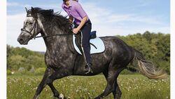 CAV 12_2010-Pferd-locker-reiten_Schoenewald_15 (jpg)