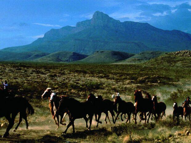 CAV 1210 MS Texas_wild horses (jpg)
