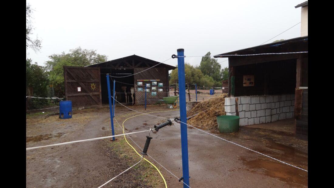 CAV-1212-Reitschultest-Liberty-Ranch-1 (jpg)