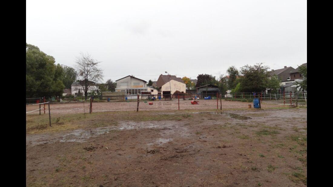 CAV-1212-Reitschultest-Liberty-Ranch-3 (jpg)