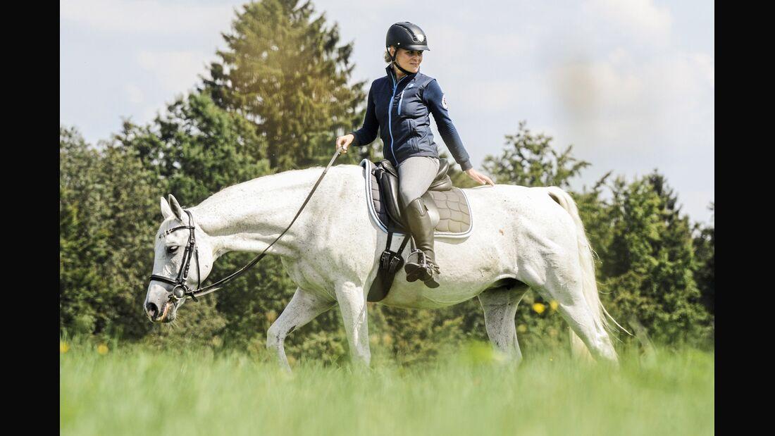 CAV 201801 Pferd Ausritt