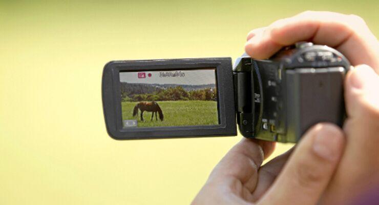 cav 5 profi tipps fur gelungene pferdevideos