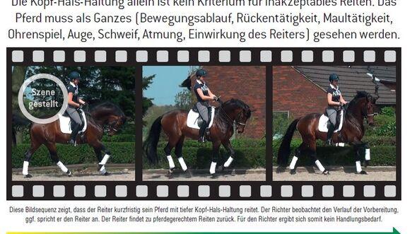 CAV Abreiten Rollkur Katalog FN 2014