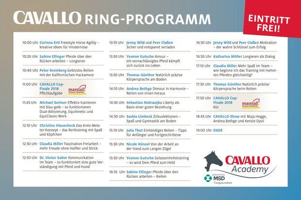 CAV Academy Programm Ring 2018
