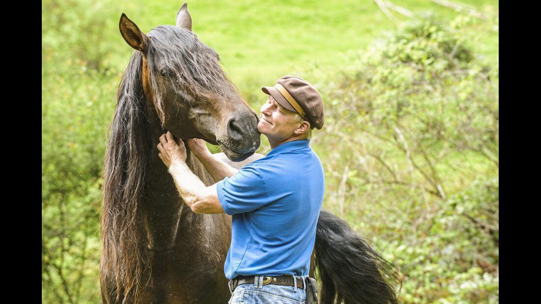 CAV Allein in der Pferde-Herde Aufmacher 12