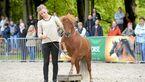 CAV-Anja-Rudolf-Pferdekenner-Cavallo-Cup-3