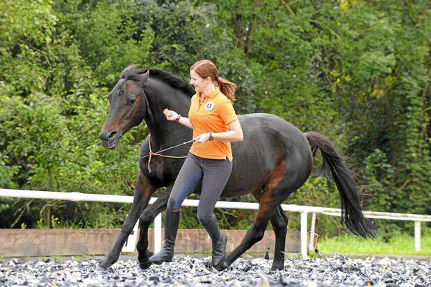 CAV-Anja-Rudolf-Pferdekenner-Cavallo-Cup-C