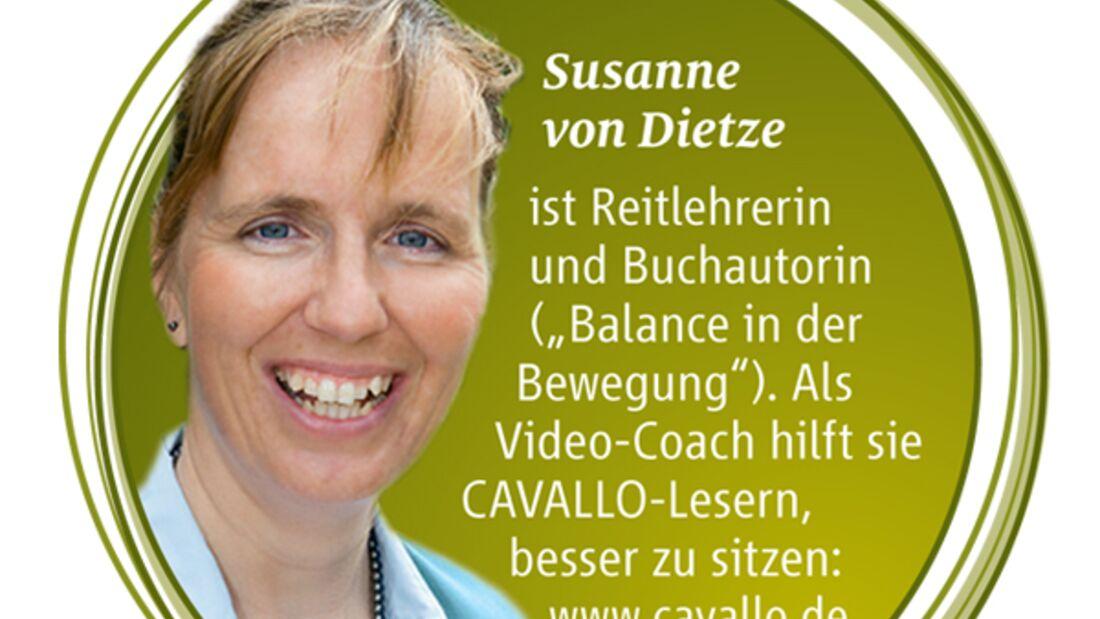 CAV Aussitzen Dressur Dietze Standpunkt - Susanne von Dietze