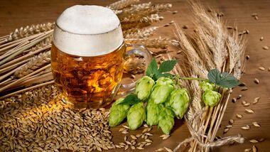 CAV Bier Bierhefe
