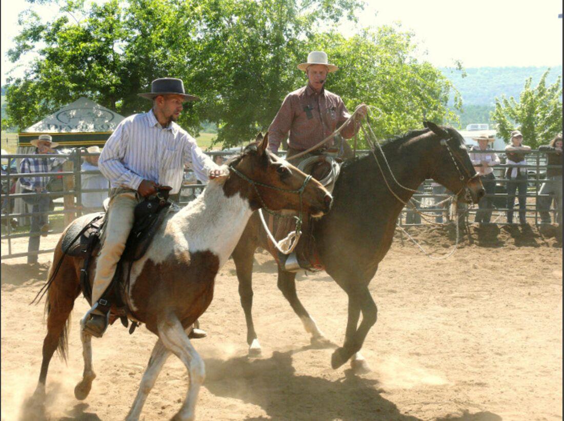 Cavallo bekanntschaften
