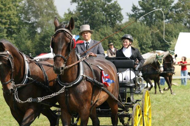 CAV Bundespferdefestival 2011 _ 03