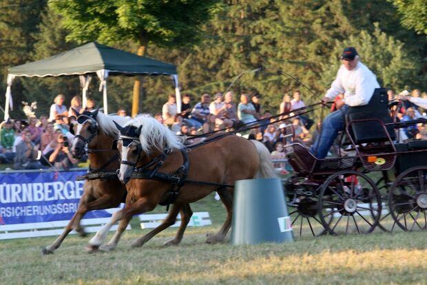 CAV Bundespferdefestival 2011 _ 05