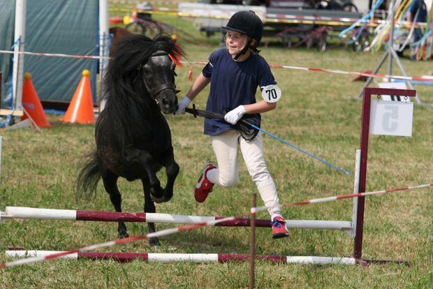 CAV Bundespferdefestival 2011 _ 08
