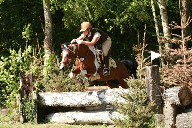 CAV Bundespferdefestival 2011 _ 14