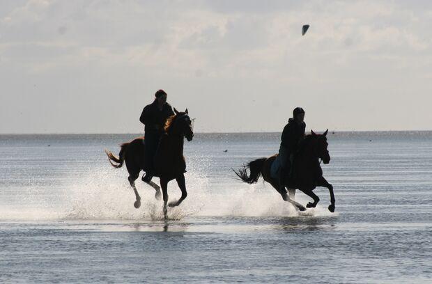 CAV CEWE Fotowettbewerb 2013 Leserfotos Chantalle Block - Lesertext: Mit unseren Pferden  die schönsten Momente zu erleben, und das Gefühl von Freiheit zu genießen  :) neu