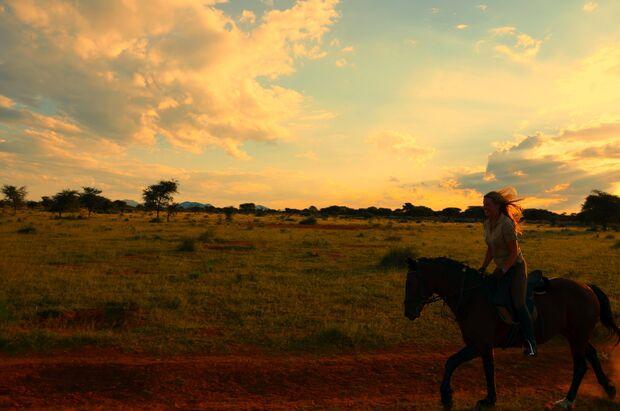 CAV CEWE Fotowettbewerb 2013 Leserfotos Christina Müller - Lesertext: Dieses Bild wurde im namibischen Busch aufgenommen, wo ich 3 Monate auf einer Lodge als Pferdemädchen verbracht habe. Es war eine wunderschöne Zeit, und zeigt meine große Pferde-Leidens