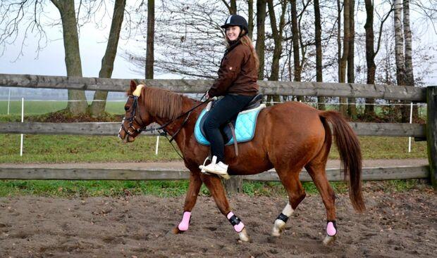 CAV CEWE Fotowettbewerb 2013 Leserfotos Heike Gangwisch - Lesertext: Sophie und ihre Pferde .....unzertrennliches Paare ?