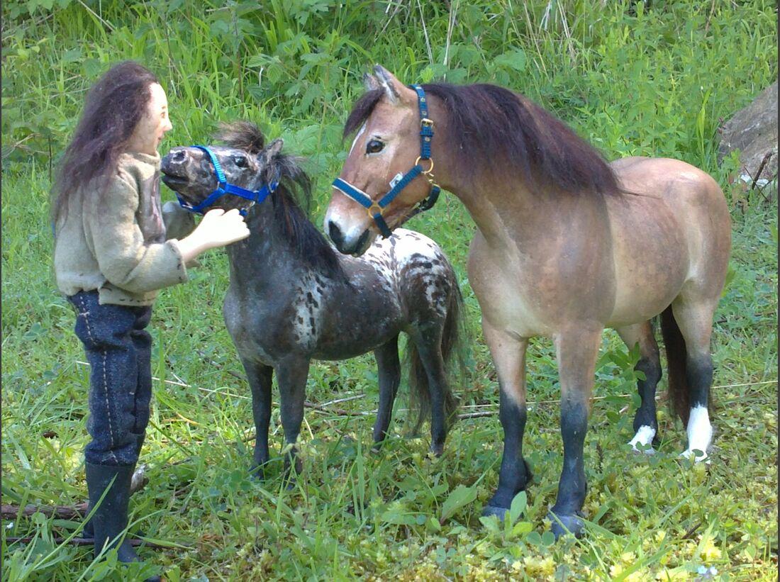 CAV CEWE Fotowettbewerb 2013 Leserfotos Juliane Garstka - Lesertext: Hallo Cavallo Meine Outdoor- Pferdeleidenschaft im Sommer  und zu jeder anderen Jahreszeit sind die Modellpferde: Erstmal welche basteln (ganz selbstmodelliert, wie bis auf das Fohlen al