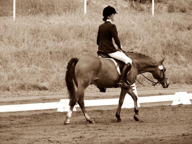 CAV CEWE Fotowettbewerb 2013 Leserfotos Kathrin Reichelt - Lesertext: Das sind die zwei schönsten Bilder, von meinem Pony Nappo und mir? neu