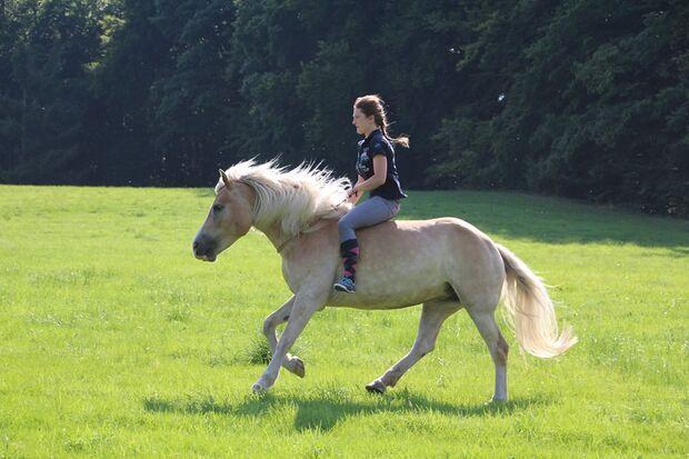 CAV CEWE Fotowettbewerb 2013 Leserfotos Katja Niedbalka - Lesertext: Amy ist das Pferd meines Lebens  neu