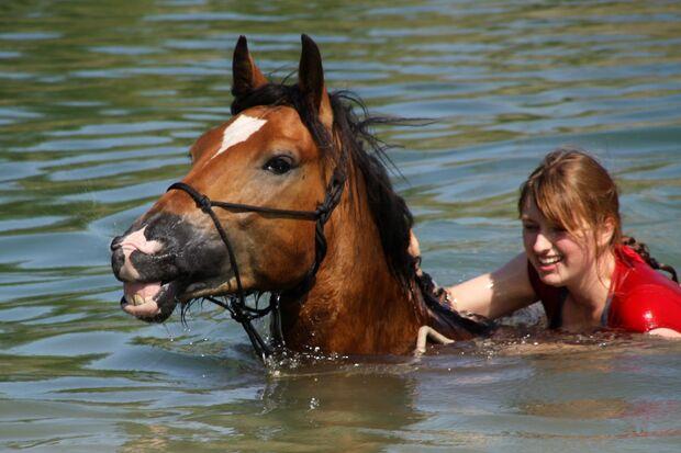 CAV CEWE Fotowettbewerb 2013 Leserfotos Patricia Brunner - Lesertext: Mein Jungpferd Sunshine (3 J.) und ich beim Schwimmen im See.