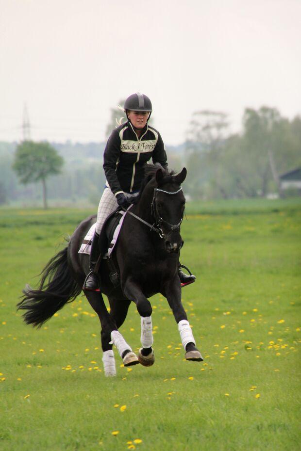 CAV CEWE Fotowettbewerb 2013 Leserfotos Saskia Peters - Lesertext: Das ist mein Pferd Diamond 4Jähriger Hannoveraner  Wallach von Donnerhall. Ich habe ihn seit dem er ein Fohlen ist.  Auf dem ersten Foto sind wir auf einem Ausritt und auf dem zweiten Foto